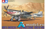 N.A. F-51D Mustang Korean War
