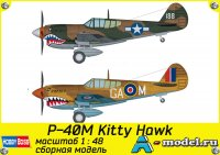 P-40E Kitty Hawk Fighter