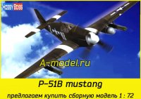 P-51B Fighter Mustang