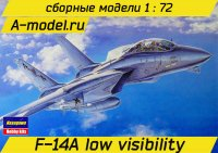 F-14A low visibility